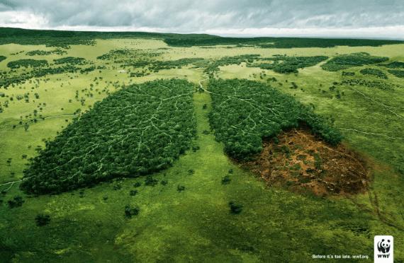 anuncios originales wwf pulmones de la tierra