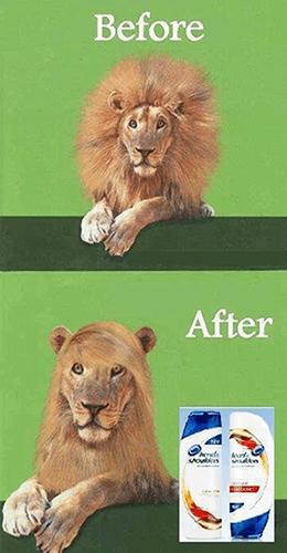 mejores anuncios publicitarios